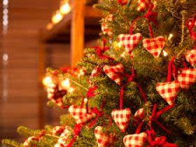 Christmas Tree Service