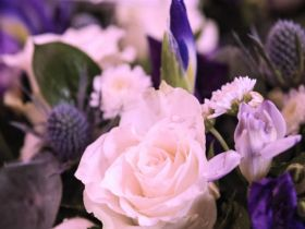 Funerals, Weddings and Baptisms